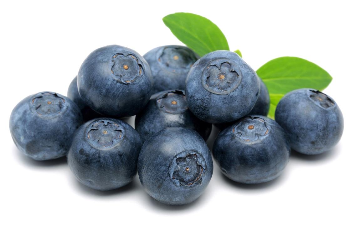 Organic Blueberry (125g punnet)