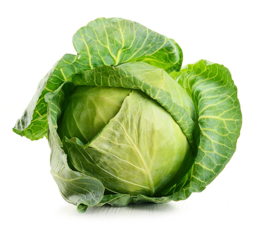Organic Cabbage Green (10ea/box)