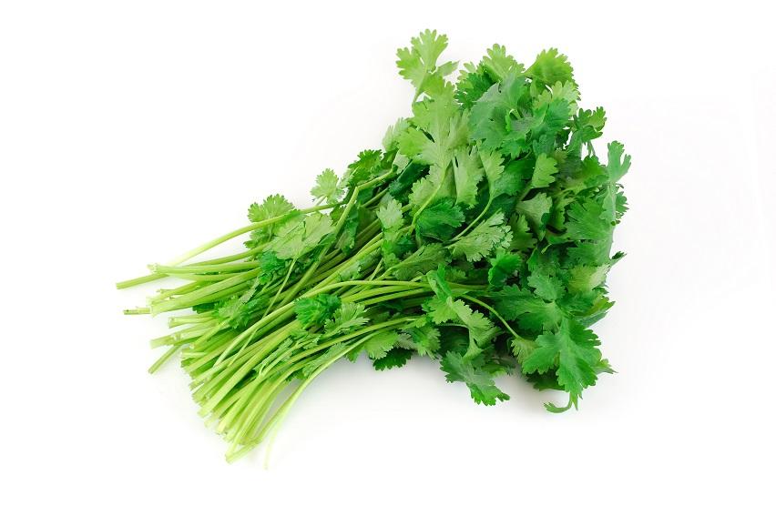 Organic Herbs Coriander (bunch)
