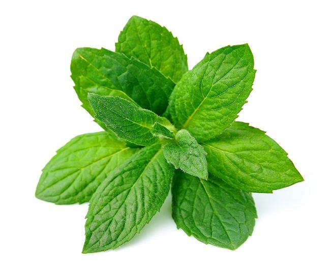 Organic Herbs Mint (bunch)