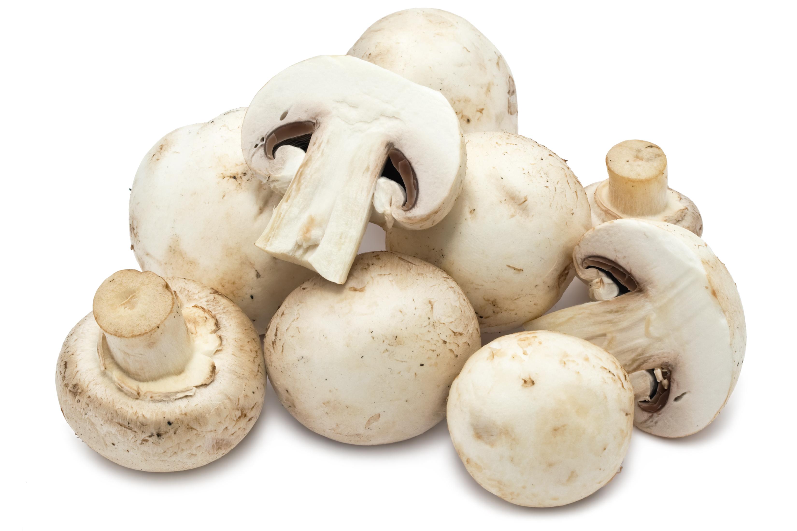Organic Mushrooms White (~100g)