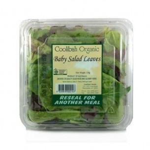 Organic Punnet Salad (120g/each)