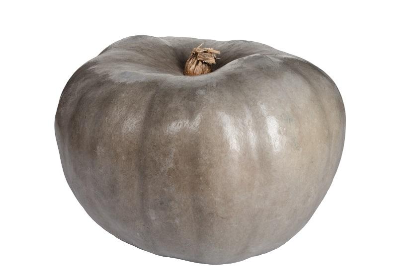 Organic Pumpkin Grey (approx 6kg)