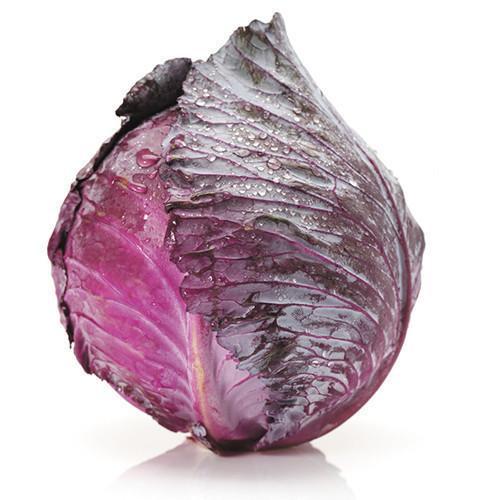 Organic Cabbage Red (12ea/box)