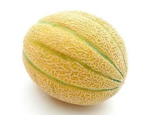 Organic Rockmelon (each)