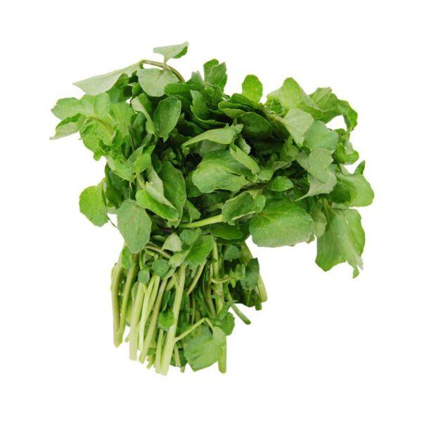 Organic Herbs Watercress /ea